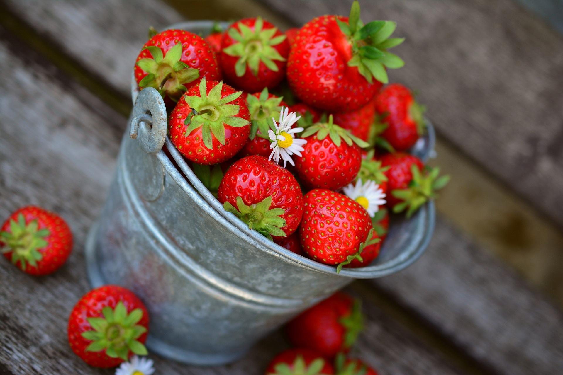 eesti-veini-ja-toidu-sobitamine-mamm&frukt-pärnu-veinimaja-rosé-vein-maasikas-ebaküdooniaga-maasikad-ämbris